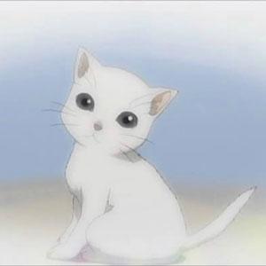 Белые коты в аниме